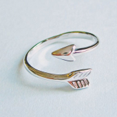 Eclectic eccentricity Stay true arrow ring