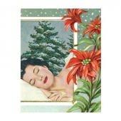 Anne Taintor Christmas card nap