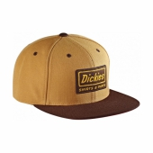 Dickies Jamestown Brown Duck Cap